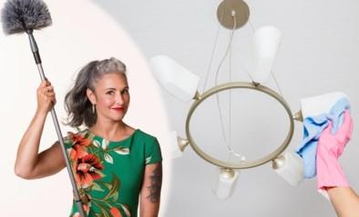 Huishoudtips van Zamarra Kok: zo poets je lamparmaturen en suède