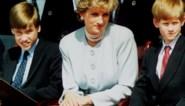 """Chanteerde BBC-journalist prinses Diana voor explosief interview? Prins William: """"Onderzoek moet waarheid achterhalen"""""""