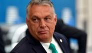 """Hongaarse premier Orban ziet """"mogelijke oplossingen"""" voor discussie rond Europese meerjarenbegroting"""
