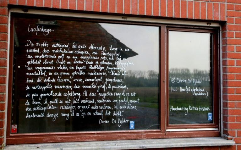 """Publieksprijs Cultuurlaureaat is voor Dorien De Vylder: """"Natuurlijk is poëzie populair, je mag het alleen niet zo noemen"""""""
