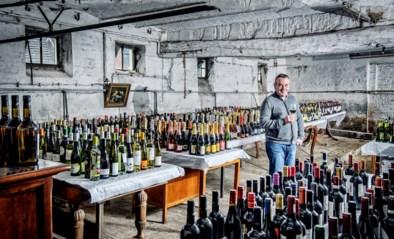 Van rasechte klassiekers tot gewaagde alternatieven: onze wijnkenner selecteert de 25 beste feestwijnen