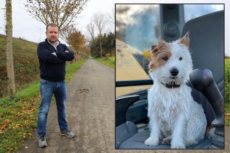 Jogger opgepakt die hondje Dribbel doodstak in Waasmunster: dader bekent de feiten