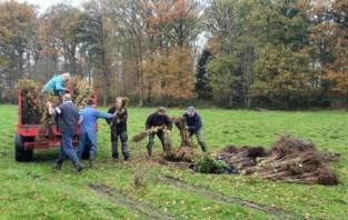 7.000 bomen en struiken gaan coronaproof de grond in
