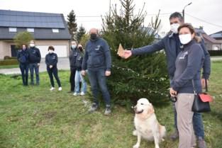 Buurtcomité zorgt voor verbondenheid met kerstbomen groot en klein