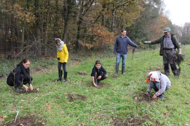 Vijfhonderd nieuwe boompjes voor natuurreservaat Tikkebroeken