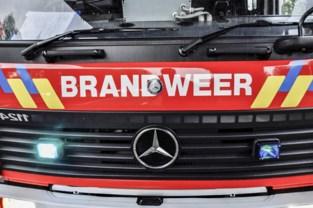 Bestelwagen vat vuur, bestuurster ongedeerd
