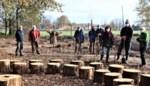 Natuurpunt plant 'keerpuntbos' als herdenking voor coronaslachtoffers