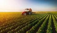 """Brussel gaat landbouwgrond kopen in Vlaams- en Waals-Brabant, Theo Francken reageert verbijsterd: """"Kunnen die Groenen nu echt eens geen dag normaal doen?!"""""""