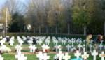 Natuurlijk Boechout plant 1.700 bloembollen