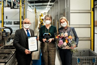 Borginsole wint Business Excellence Award 2020