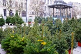 Eén traditie die wel door mag gaan: kerstbomen te koop op de Kouter in Gent