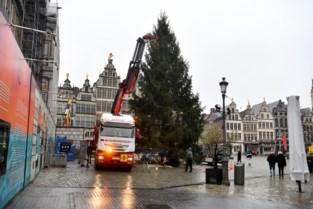 Daar is de Antwerpse kerstboom (en nu de lichtjes nog)