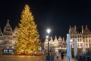 Duizenden lichtjes: kerstboom op Antwerpse Grote Markt nu ook versierd