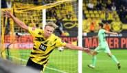 """In hemelsnaam, hoe stop je Erling Haaland? Vijf 'zware jongens' geven Club Brugge enkele gouden tips: """"Gebruik de niet-geoorloofde trucskes"""""""