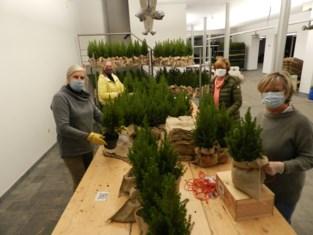 Lions Hartevrouwe pakken 10.000 kerstbomen in