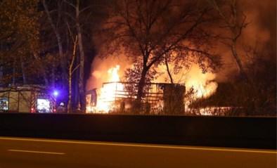 Vrachtwagens branden uit na zwaar ongeval op E34: geknelde chauffeur komt om het leven
