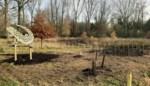 Geboortebos Laerestraat is 92 bomen rijker