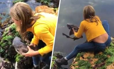 Moedig meisje (11) verbaast het internet door haai te redden met blote handen
