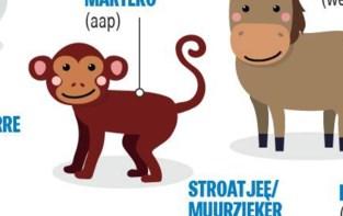 Week van het Gents: kent u de Gentse naam van deze 10 dieren?