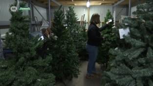 Goedkope kerstbomen vliegen de deur uit