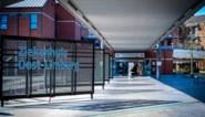 Alle Limburgse ziekenhuizen volgen coronapatiënten thuis op met ZOL-box