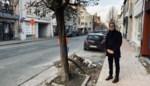 Meer groen, zone 30 en minder wateroverlast: Langestraat krijgt ingrijpende make-over