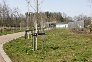 De Averegten 'restaureert' heidevegetatie