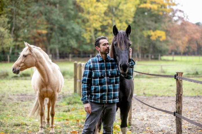 Een paardencoach iets voor jou? Wij deden de test in Arendonk