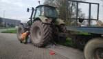 Olieleiding breekt: chauffeur kan stuurloze tractor nog net langs drukke rotonde manoeuvreren