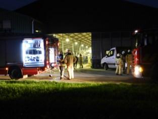 Brandweer rukt uit naar koeienstal in Hoogstraten