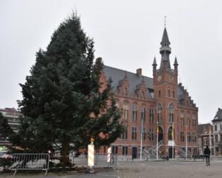 Markt verwelkomt kerstboom van 14 meter hoog