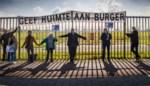 Vliegerplein in beroep tegen vrijspraak luchthaven, Borsbeek laat zaak (financieel) los