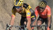 """Ex-winnaar Greg Van Avermaet over de Flandrien 2020: """"Wout van Aert was gewoon impressionant"""""""