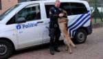 Vice en Joeri vormen het eerste  patrouillehondenteam van politiezone