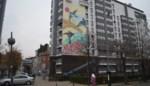 Wijk Marollen krijgt nieuwe muurschildering