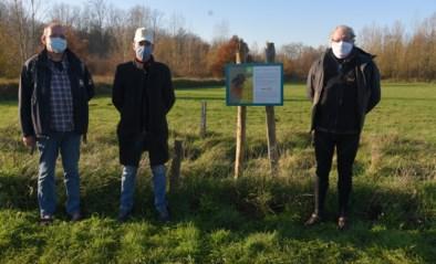 Rotary informeert reservaatbezoekers over bijvriendelijke houtwand