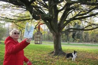 Zelzaatse doopt boom in park om tot troostboom