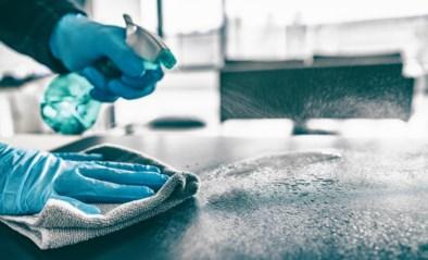 Hoe lang kan je met één sponsje afwassen? En hoe pak je die vervelende fruitvliegjes aan? Al jullie vragen over hygiëne in huis beantwoord