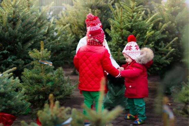 Mama laat haar peuter de kerstboom versieren en deelt dan hilarisch resultaat