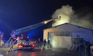 Uitslaande loodsbrand in Hoepertingen: enkel houten kisten verwoest
