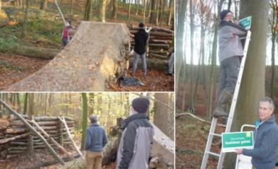 """Wandelaar ontdekt illegaal mountainbikecircuit in beschermd bosgebied: """"Wat als iemand zijn nek hier breekt?"""""""