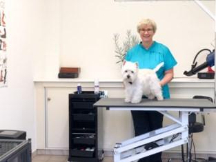 """Heropening hondenkappers logisch: """"Gezondheid hond én baasje komt anders in het gedrang"""""""