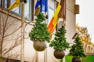 Milieuvriendelijke kerstverlichting op Campus De Nayer