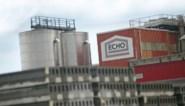 Een derde van de jobs bij betonbedrijf Echo in Houthalen-Helchteren en Genk bedreigd