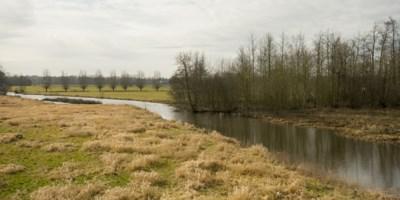"""Natuurpunt koopt drie natuurgebieden in regio Gent: """"Willen natuur toegankelijker maken"""""""