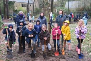 700 leerlingen maken schoolomgeving Sint-Ludgardis nog wat groener