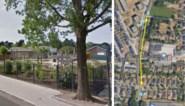 Nieuw fiets- en wandelpad om drukke school in Wondelgem veiliger te kunnen bereiken