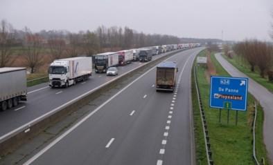 """Lange file van vrachtwagens in 'Brexitfile' aan Franse grens: """"Nog piekdagen als deze verwacht"""""""