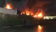 Zware brand bij afvalverwerkend bedrijf in Herenthout