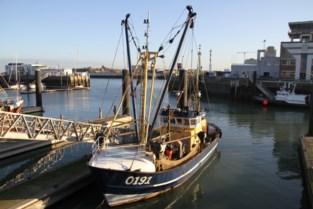 Vlaamse vissers mogen vanaf volgend jaar wellicht meer tong vangen